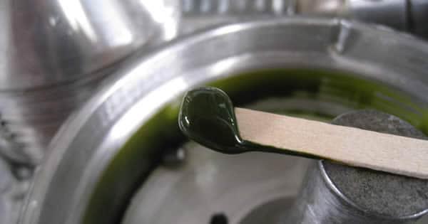 Algae biomass Concentrate